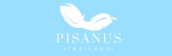 pisanus